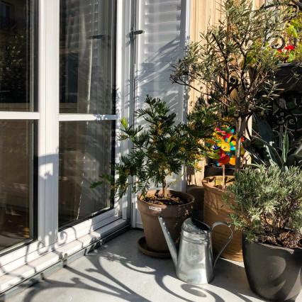 Fenêtre eben en aluminium extérieur