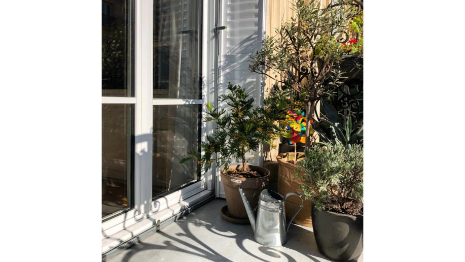 Fenêtres eben en aluminium extérieur à paris